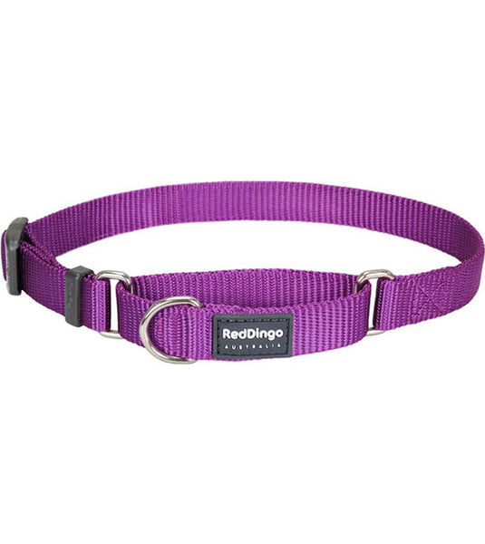 Red Dingo Martingale Choke Prevention Dog Collar (Purple)