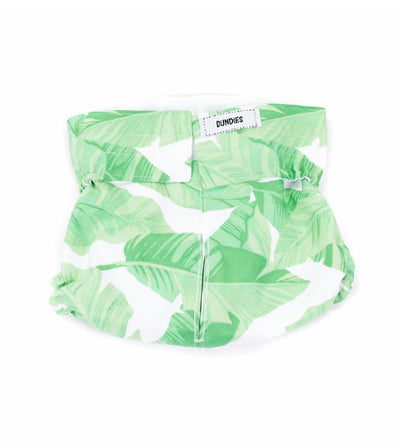 Dundies All In One Reusable and Washable Nappy (Tropical) for Dogs