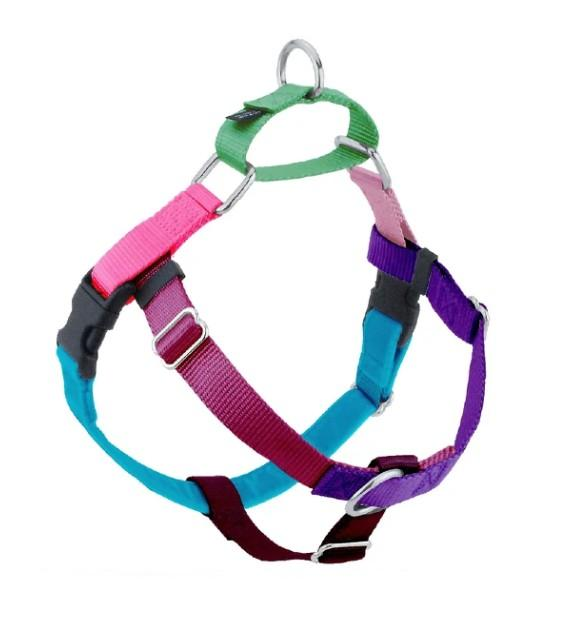 FREEDOM No-Pull Harness and Leash (Jellybean Sugar)