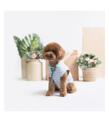 Ohpopdog Mint Grey Striped Hoodie Dog Apparel
