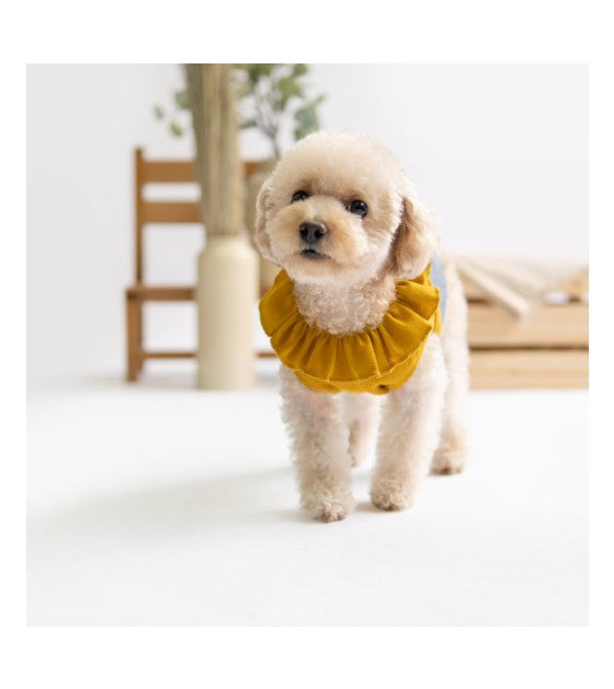 ohpopdog Mustard Ruffles Dress Dog Apparel