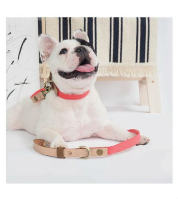 ohpopdog Natural Leather with Salmon Pink Hemp Cotton Dog Leash