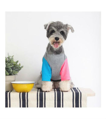 ohpopdog Oh! Basic Boat Neck Neon Cyan Pink Sleeves Dog Apparel