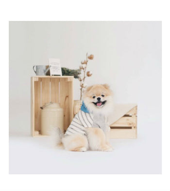ohpopdog Oh! Basic Hoodie in Grey White Stripes Dog Apparel
