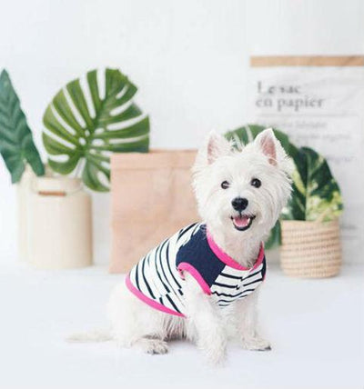 ohpopdog Oh! Basic Tank Quilted Blue Striped Dog Apparel