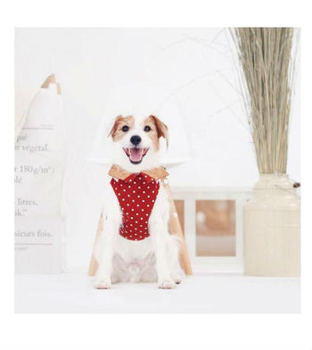 ohpopdog Oh! Orange Polka Dot Cotton with Corkboard H-Harness Dog Harness