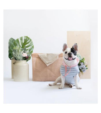 Ohpopdog Pink Grey Striped Hoodie Dog Apparel