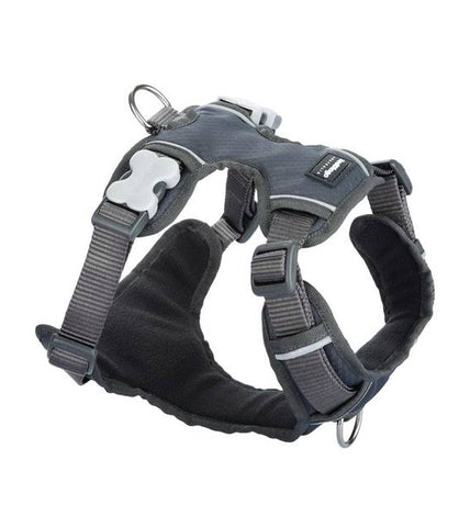 Red Dingo Padded Dog Harness Charcoal