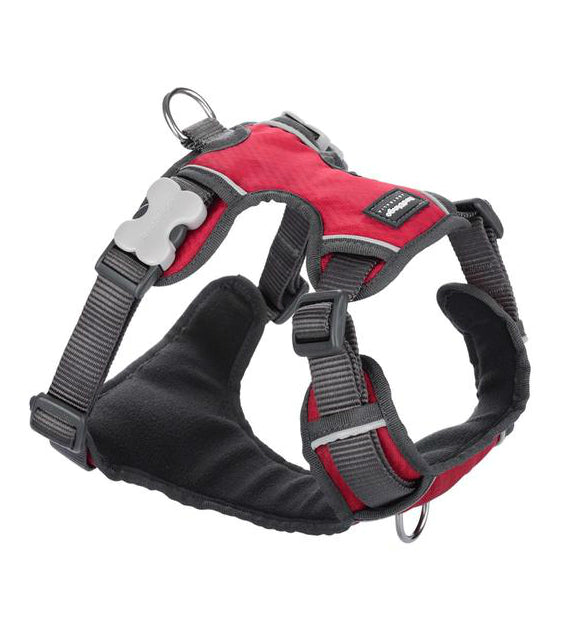 Red Dingo Padded Dog Harness Red