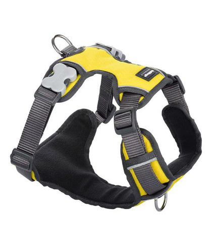 Red Dingo Padded Dog Harness Yellow