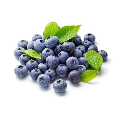 TFA Blueberry Wild - Steam E-Juice | The Steamery