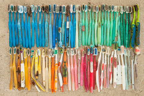 Toothbrush Plastic Pollution