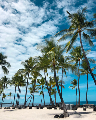 White Sand Beaches On Big Island Hawaii