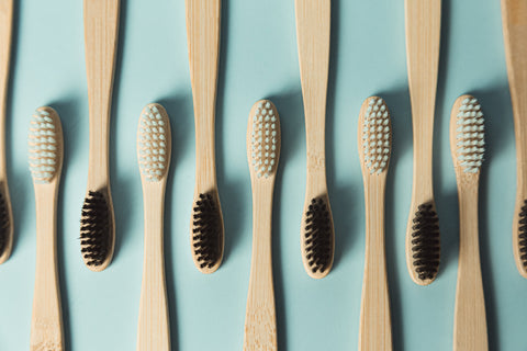 comparing sustainable toothbrushes
