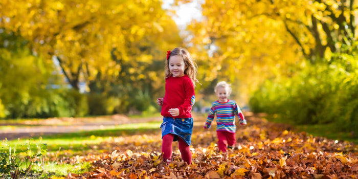 Autumn Activities for Kids to Enjoy over October half term