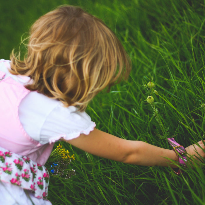 How to make the most out of your garden with the kids