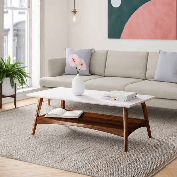 Arlo Coffee Table with Storage