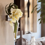 Wall Sconce Amphora Vase-Clear