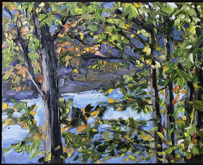 #91 Upton Lake, Through the Trees, 9:00 am September 25th, 2020