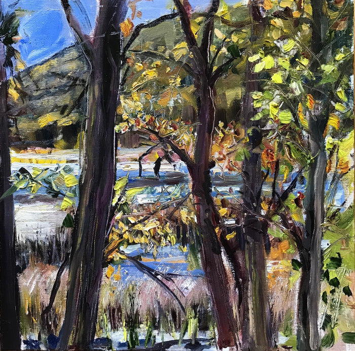 #92 Thompson Pond, Through the Trees, 1:00 pm, October 9th, 2020