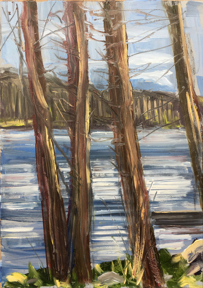 #5 Upton Lake through the Trees, 3:30 pm, April 25th, 2020