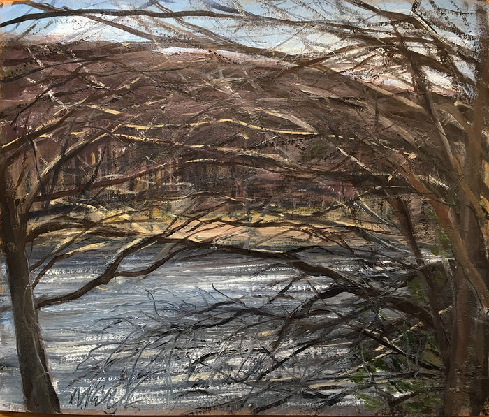 Michael Gallagher #19: Through the Trees, Upton Lake, March 24th, 2019