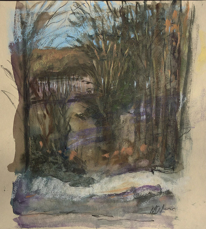 Michael Gallagher #P11: Lake through the trees, Clinton Corners, February 17th 2019 (Outside and below 32 F.)