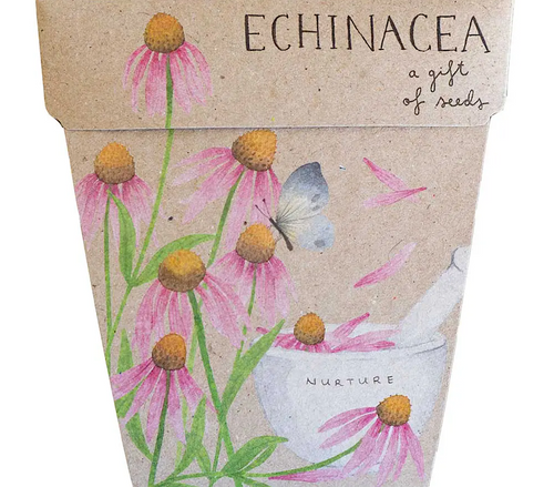 Echinacea Gift Of Seeds