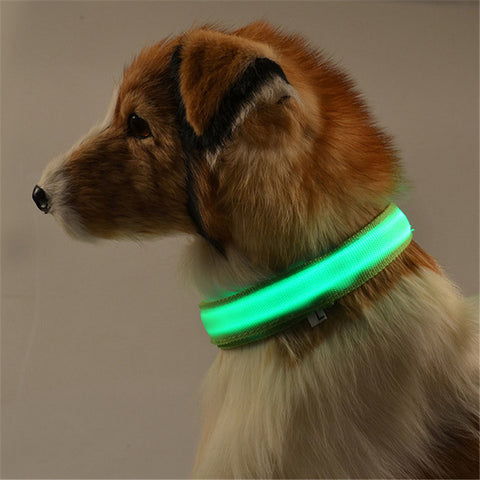 Image of Premium Glow In The Dark LED Halsband