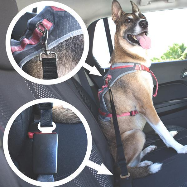 Pet Safety Adjustable Seat Belt