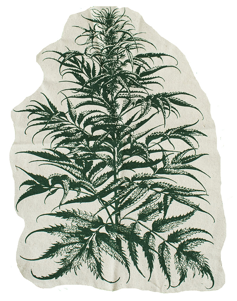 Cannabis Patch