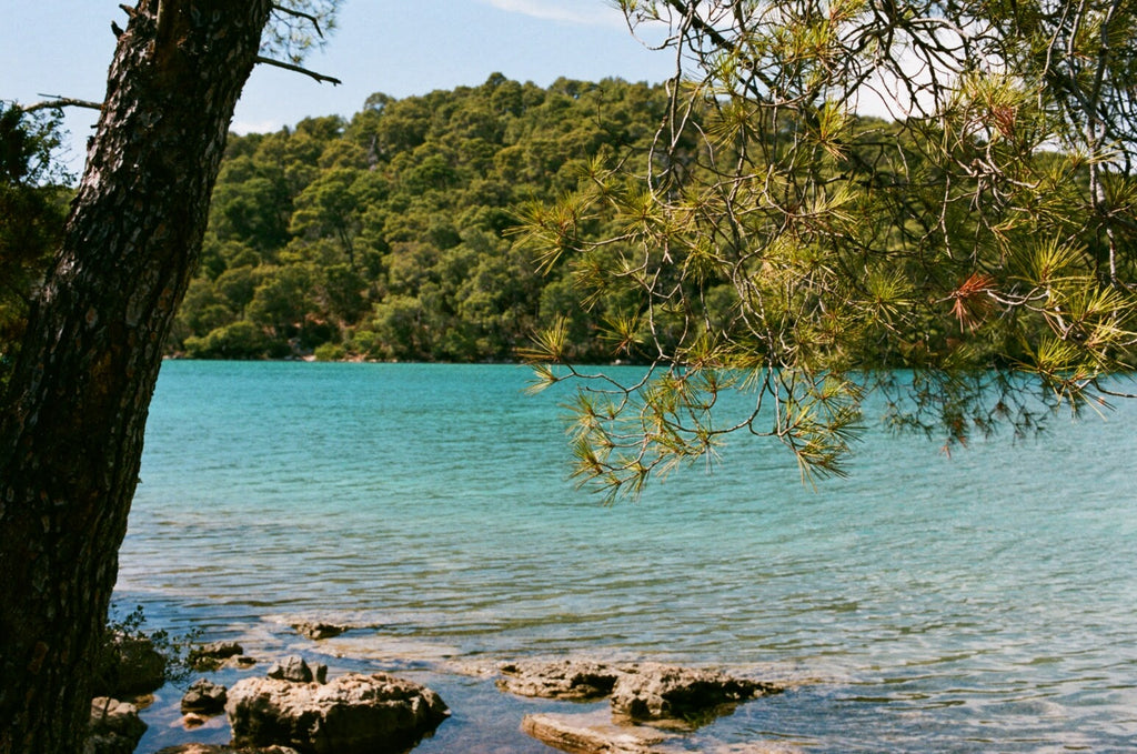 Ultimate Trip: Mljet National Park sea view