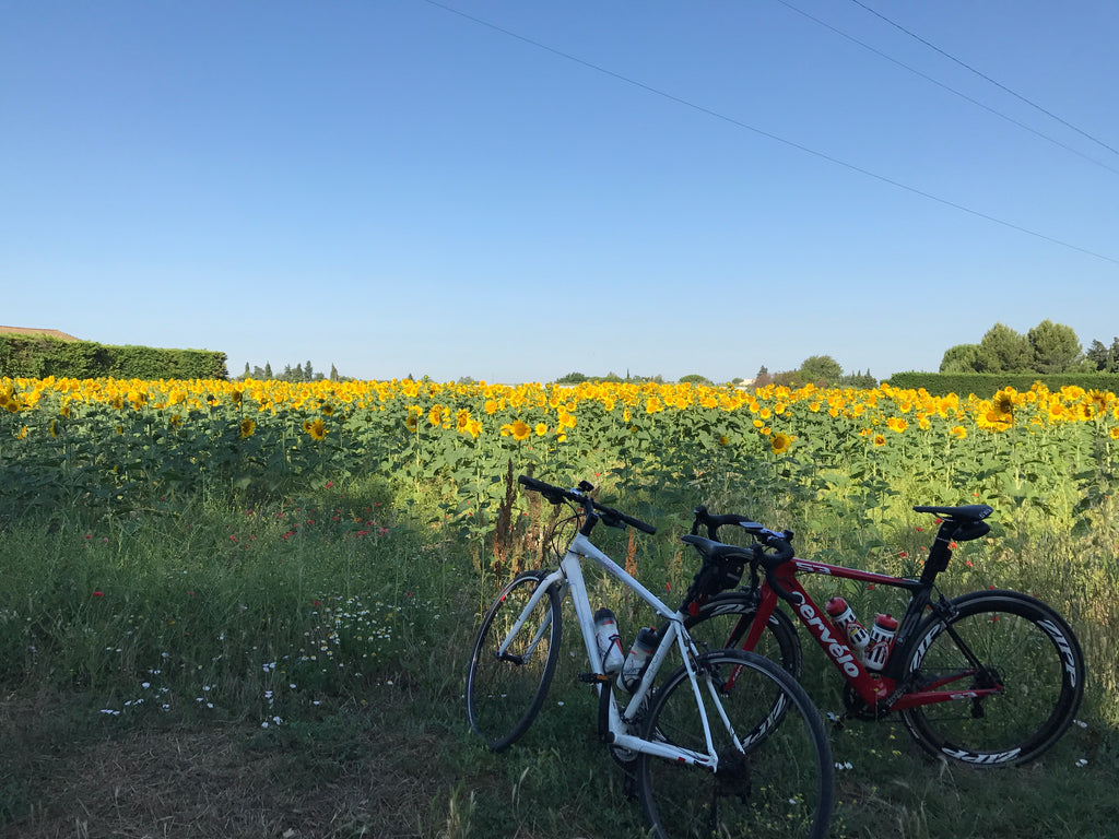 bikes in front of a sunflower field