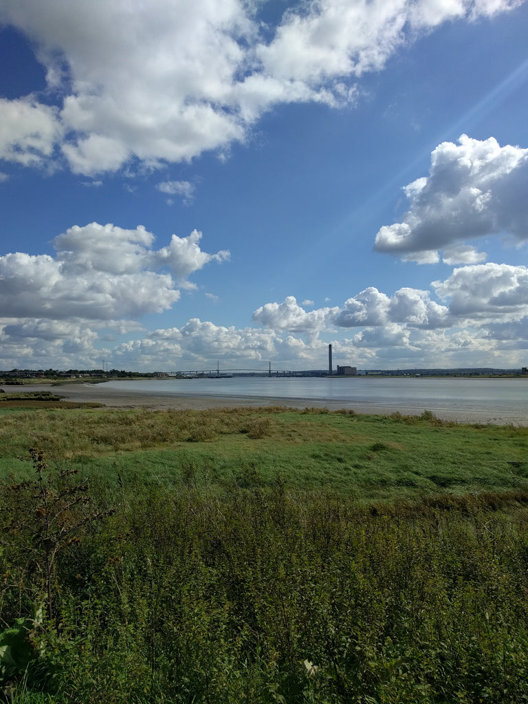 Canary Wharf to Rainham Marshes view of the marshes