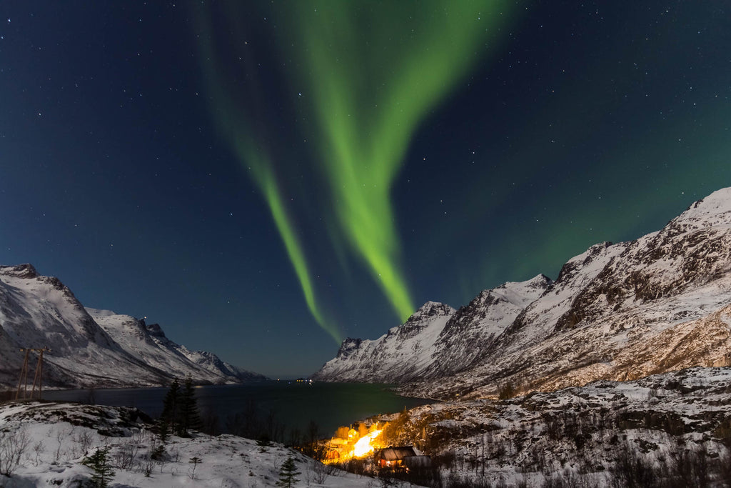 viking tour in norway northern lights