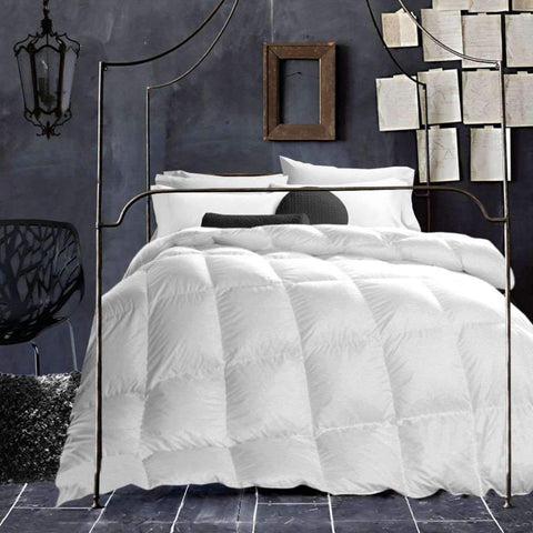 Sandra Venditti - T200 Cotton noil Silk Duvet