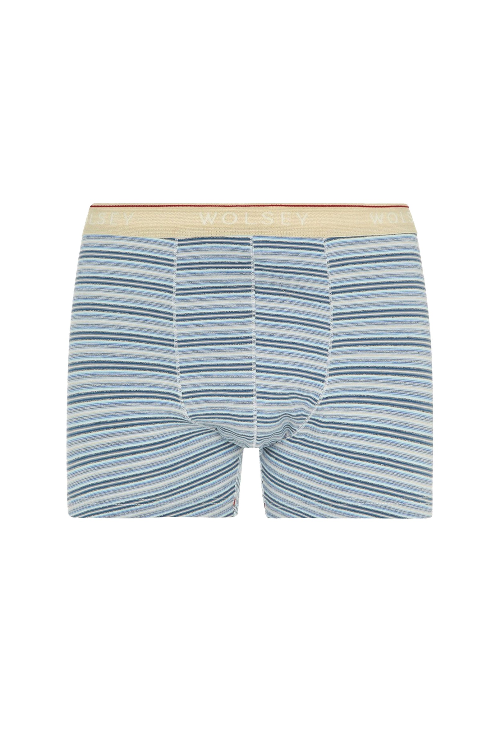 Blueprint Vintage Trunks