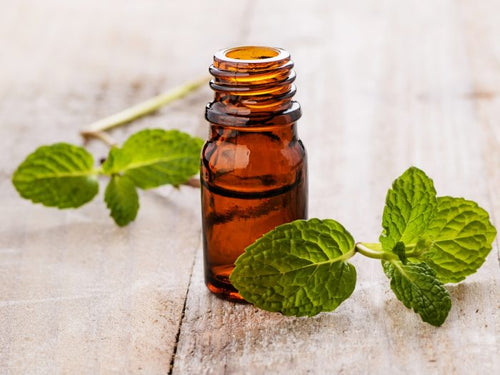 Spearmint - 10 mL Essential Oil