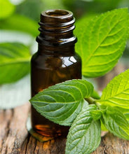 Peppermint - 10 mL Essential Oil