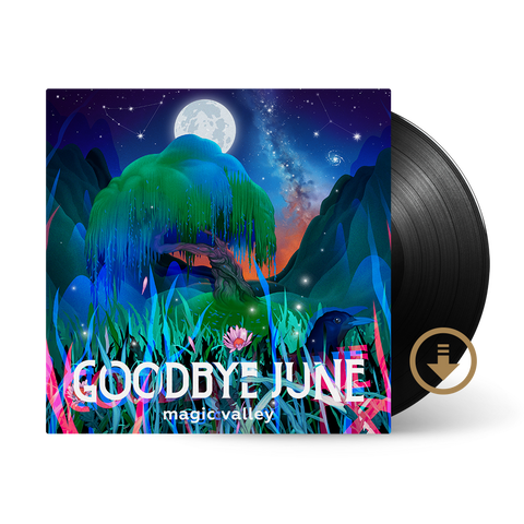 Vinyl LP + Digital Album