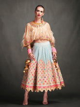 EMBROIDERED SKIRT & EMBROIDERED CAPE BLOUSE