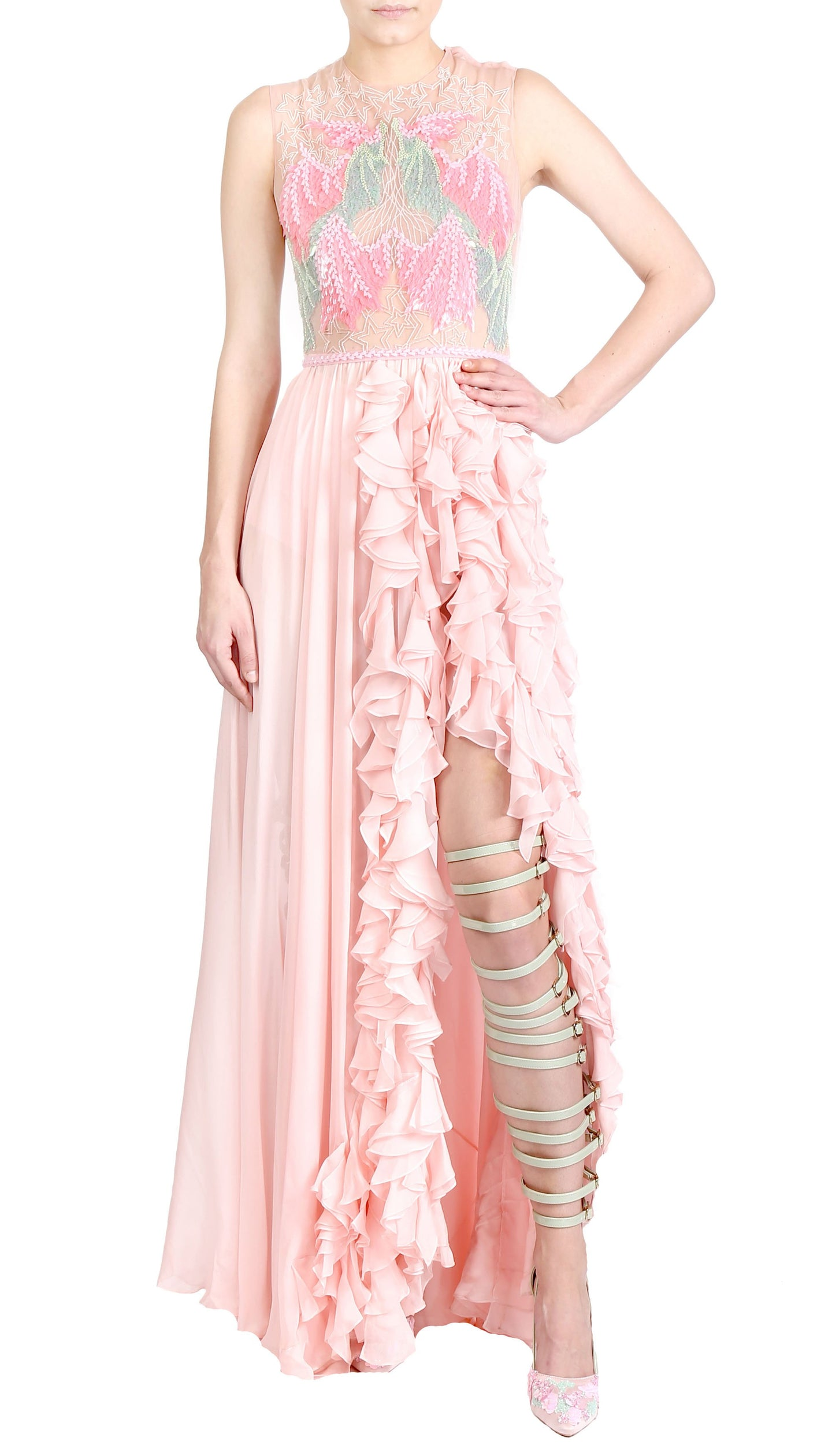 VEILED ROSE DRESS