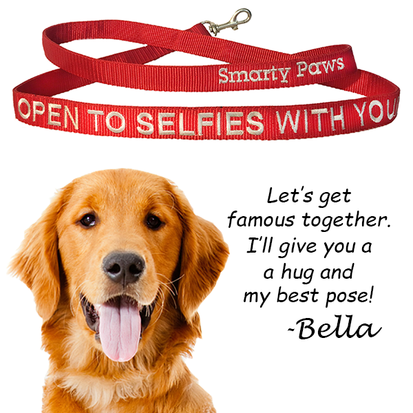 """Open To Selfies With You!"" The Dog Leash for the Too Cool Smarty Paws - The Smarty Paws"