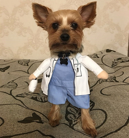 Doctor Costume For Dogs
