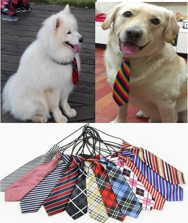 Large Dog Neckties & Bow Ties In Multiple Colors 100 Count