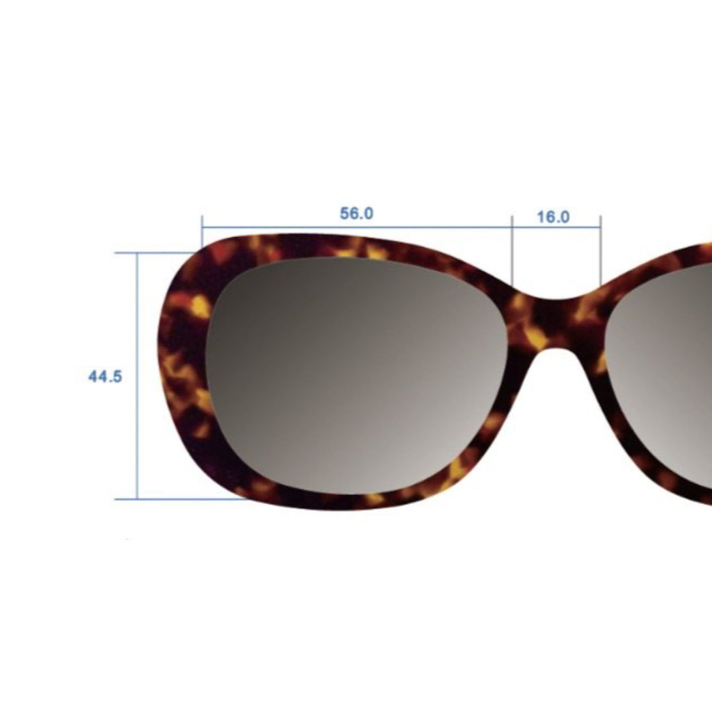 Solefx Sunglasses