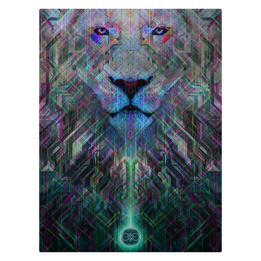 "Solstice Son - ""Imamu"" 60""x80"" Fleece Blanket"