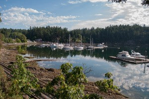 20 things you didn't know about Salt Spring Coffee
