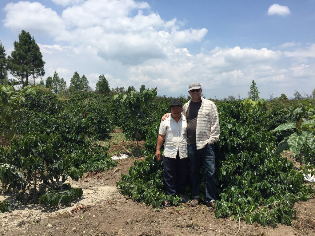 Coffee Origin: Sumatra in Spring 2016