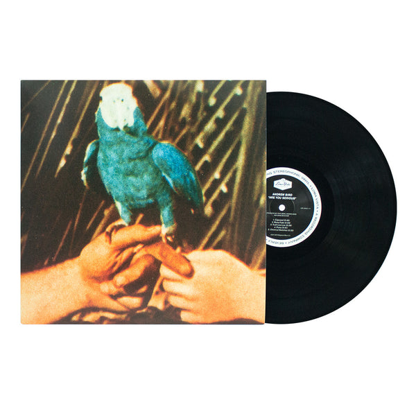 Andrew Bird- Are You Serious (Black Vinyl)